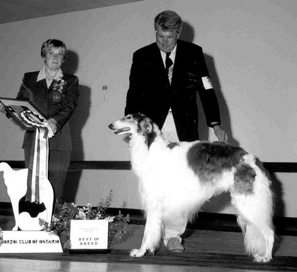 Borzoi Club of Ontario 2001 Best in Specialty